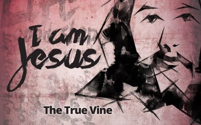 I Am Jesus: The True Vine