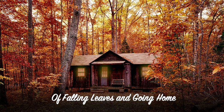 of-falling-leaves-and-going-home
